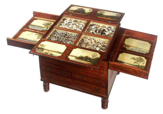 Macquarie Collector's Chest c 1818 Australian red cedar, NSW Rosewood, brass fittings, oil paint, glass, and natural history specimens Purchased 2004 Collections of the State Library of NSW